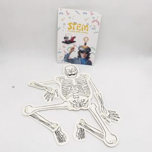 Monthly STEM Kits , Human Skeleton