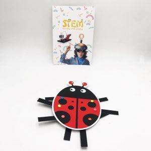 STEM Kits for Kindergarten Students ; DIY Ladybug